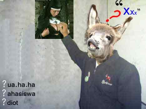 dasar-keledai